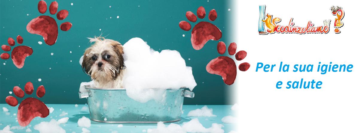 Alimenti per cani di marca a Messina